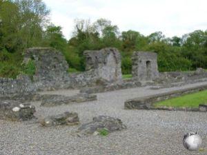 Mellifont Abbey (Monastery)_2084563110096713974