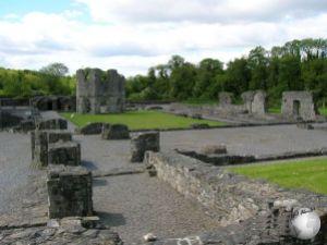 Mellifont Abbey (Monastery)_2089704920096713974