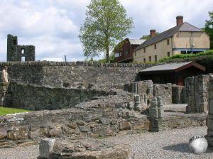 Mellifont Abbey (Monastery)_2940083900096713974