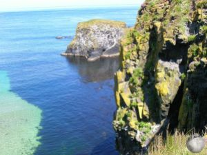 Carrick-a-Rede_2357655330096713974