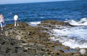 Giant's Causeway_2496610390096713974
